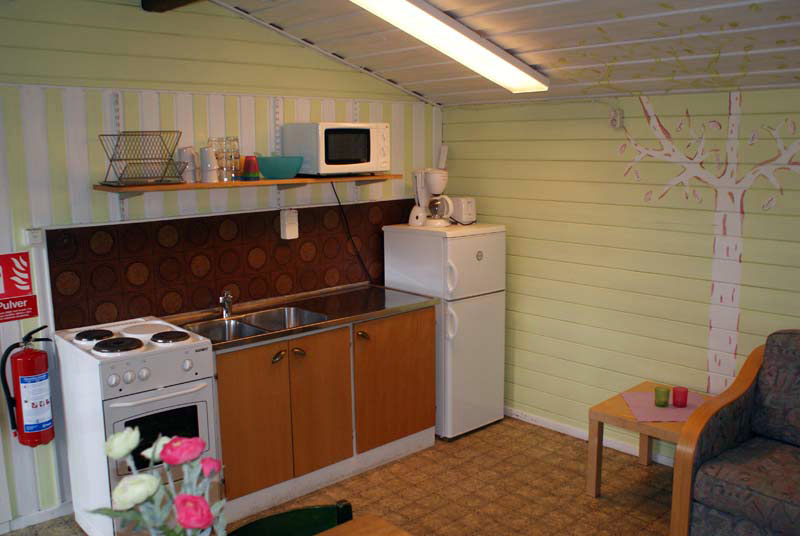4-person (2-room) cottage, kitchen